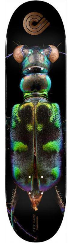POWELL PERALTA Levon Biss 248 Tiger Beetle Popsicle 8.25 - Skateboard Deck